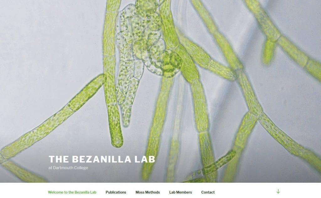 The Bezanilla Lab screenshot