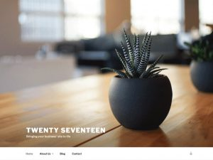 Twenty Seventeen theme screenshot