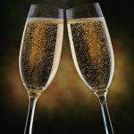 new_years_eve_toast-3644