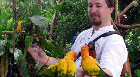 I hate Valentine's Day because it's the anniversary of the death of my parakeet Belinda, and not because I'm a lonely single guy who collects parakeets