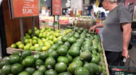 A man shops for avocados at a Whole Foods Market on Aug. 28, 2017, in New York.