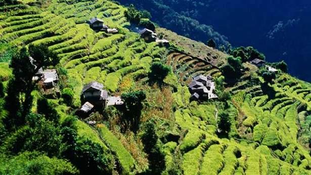 nepal-terraces©Rex-615x346