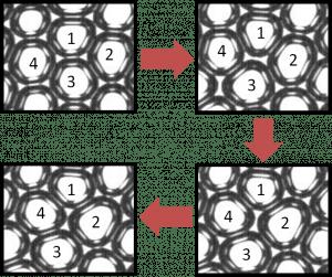 Bubbles in a bubble raft undergoing a T1 rearrangement event.