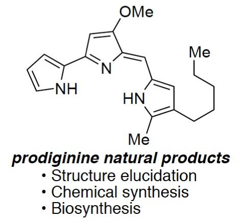 ProdiginineCR