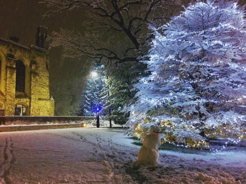 alex snow