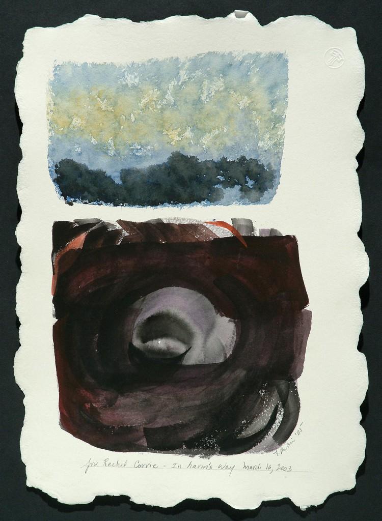 In Harm's Way: Rachel Corrie | 危険なところへ-レイチェル・コリー (2003)