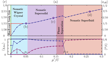 Paper on nematic quantum liquid crystals in frustrated lattices published in Phys. Rev. B