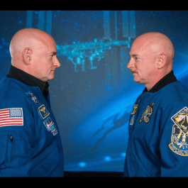 Party for Astronaut Scott Kelly's Return to Earth