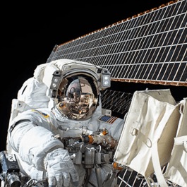 NASA Twins Study: Bodies in space