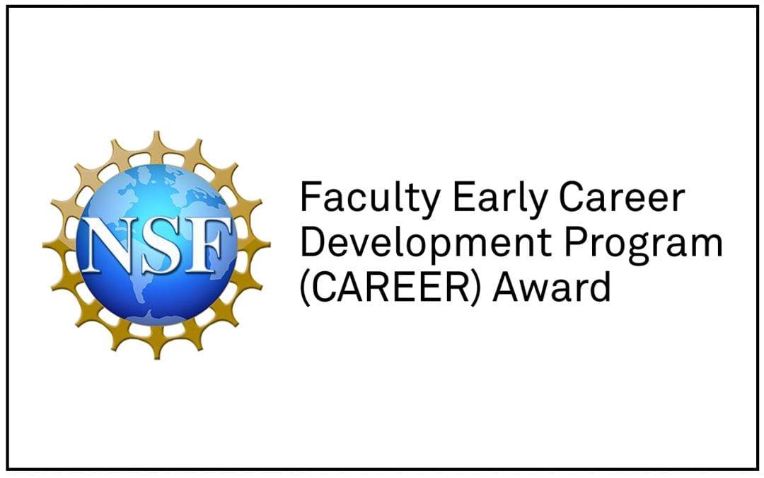 Erik Andersen receives prestigious NSF honor for young faculty