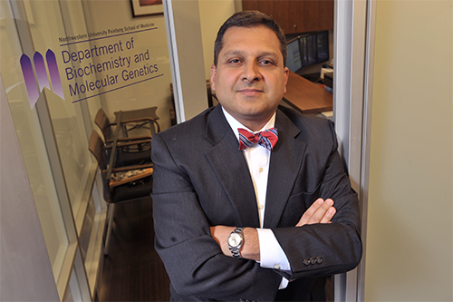 Ali Shilatifard Elected to American Association for the Advancement of Science