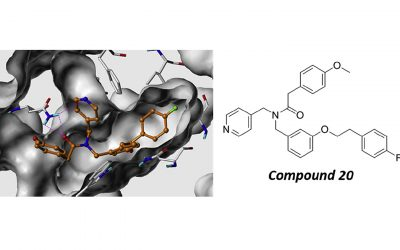 CMIDD-Designed Compound Shown To Fight Blood Cancer