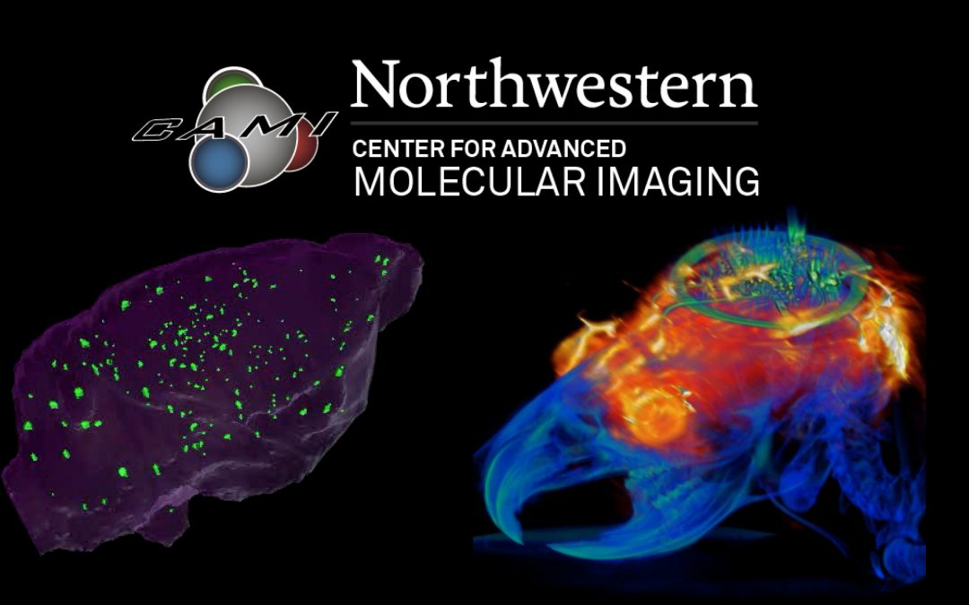 Request for Proposals: Pilot Project Funding for Imaging Studies