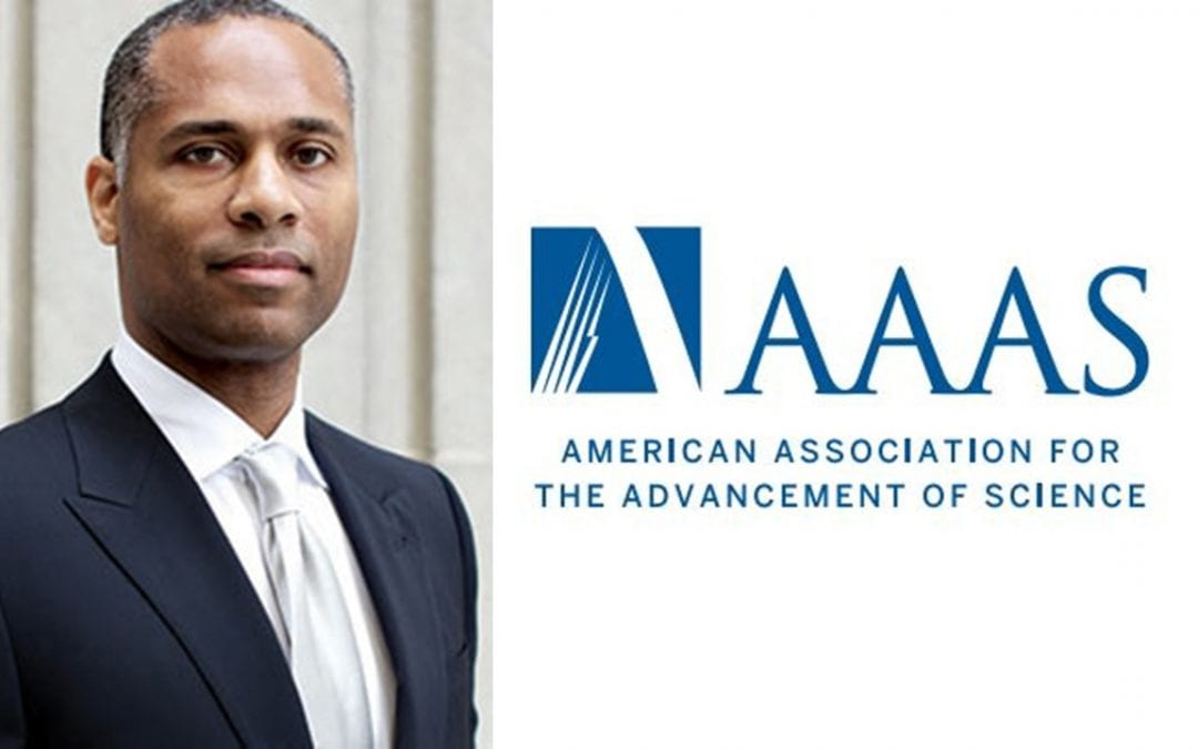 CLP member Guillermo Ameer, others named AAAS fellows