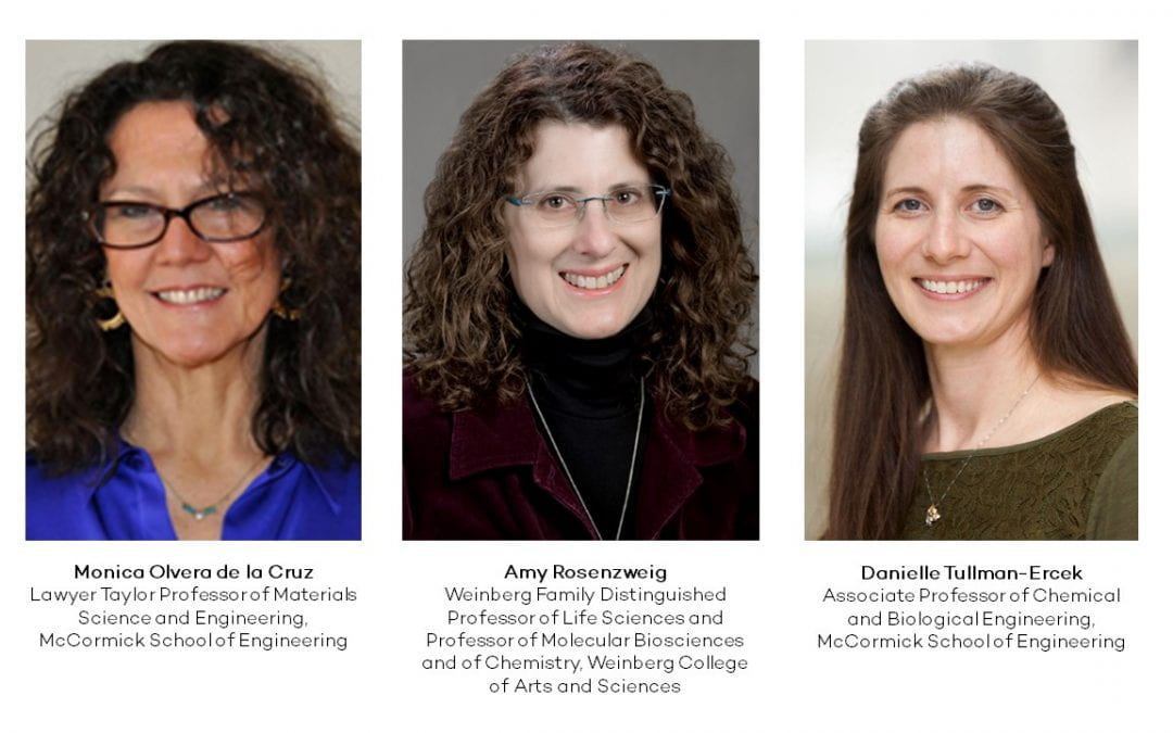 Three Distinguished Researchers Join CLP's Faculty Executive Committee