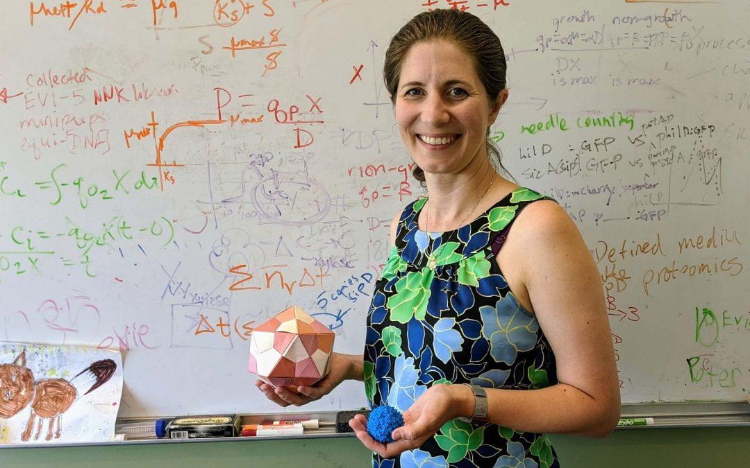 Building Better Biologics: A Q&A with Danielle Tullman-Ercek