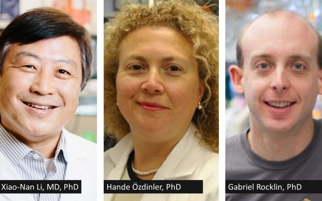 Chemistry of Life Processes Institute Welcomes Three Feinberg Faculty Members