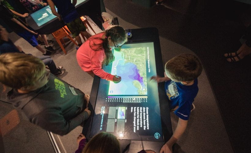 children interact with large touchscreen