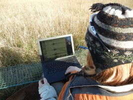 Emily Wolin working with sensors in the field.