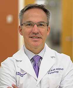 Daniel J Brat, MD, PhD