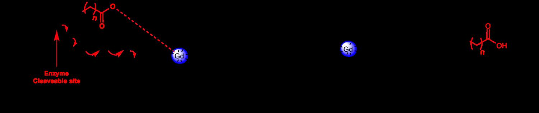 Betagalelectroncascade