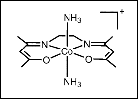 Structure of the Co(III) Schiff base complex with ammine axial ligands