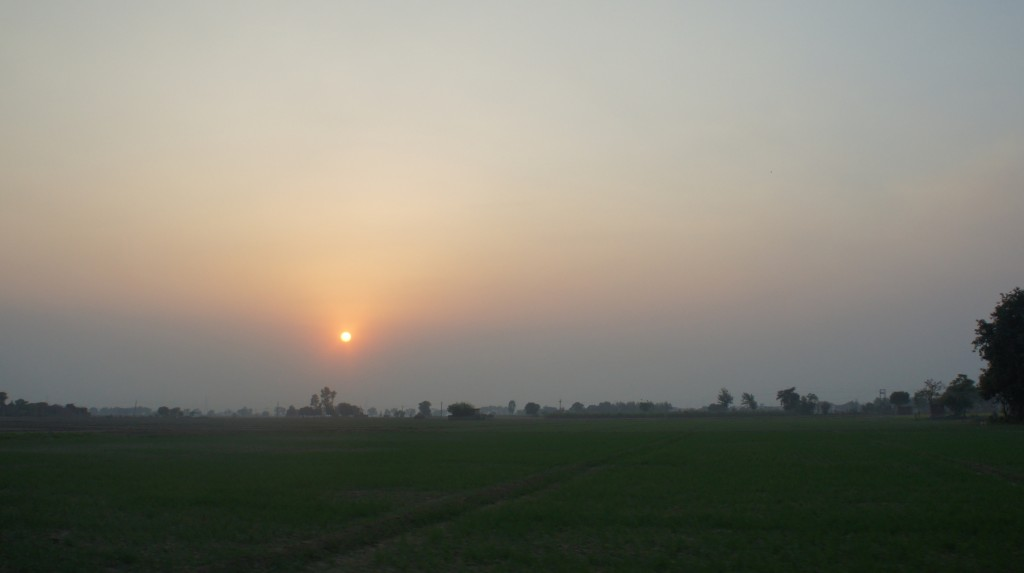 It seemed appropriate to end this post with a sunset over Punjab. Photo taken on the outskirts of Punjab, over fallow fields.