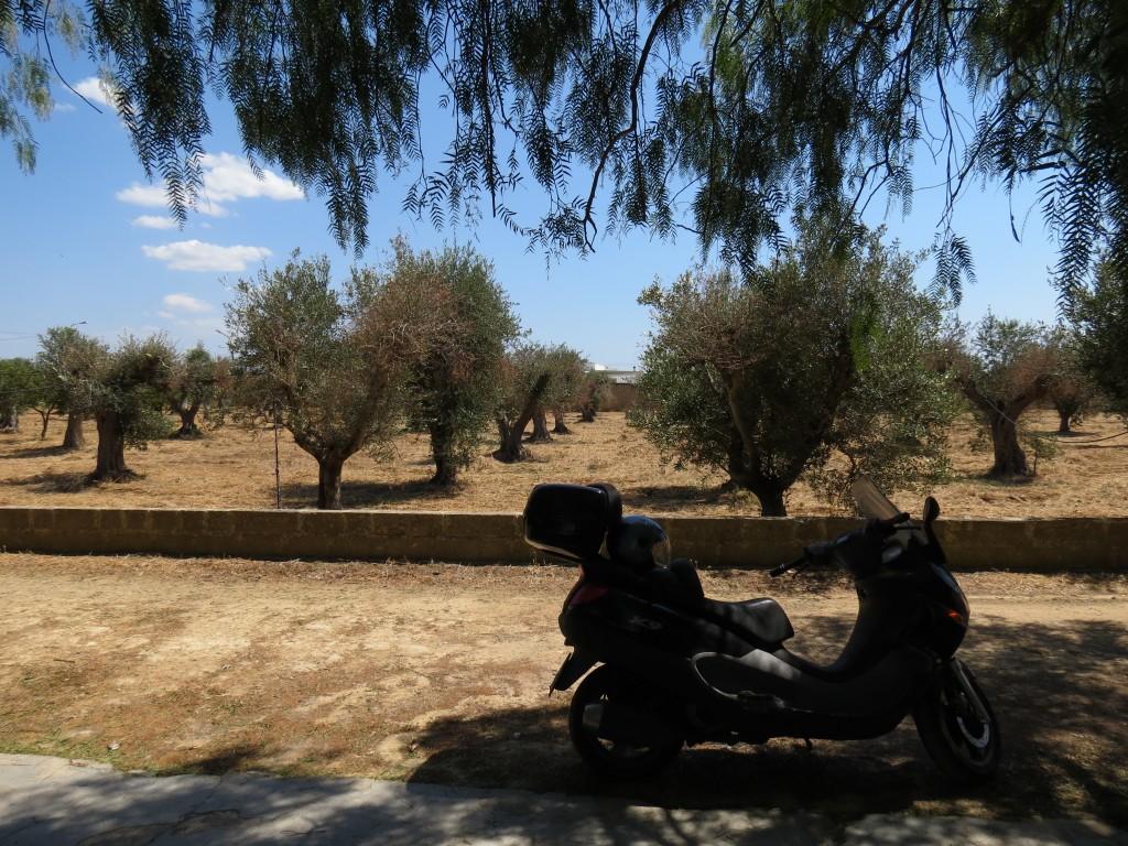 Puglia Day 1 002