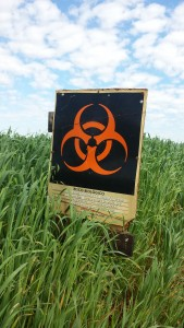 A biosafety sign in an Embrapa test field recently containing GM soy