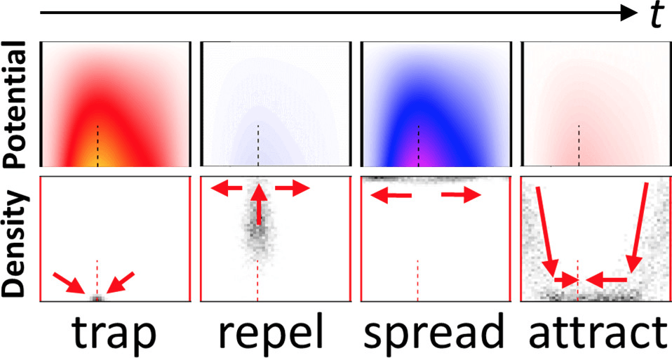 Density-Mediated Transport in a Multi-Particle, Multi-Dimensional Flashing Ratchet