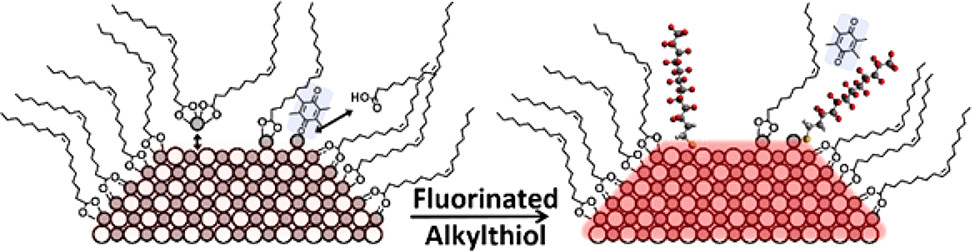 Mechanisms of Defect Passivation by Fluorinated Alkylthiolates on PbS Quantum Dots