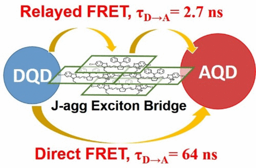 Accelerating FRET between Near-Infrared-Emitting Quantum Dots Using a Molecular J-aggregate as an Exciton Bridge