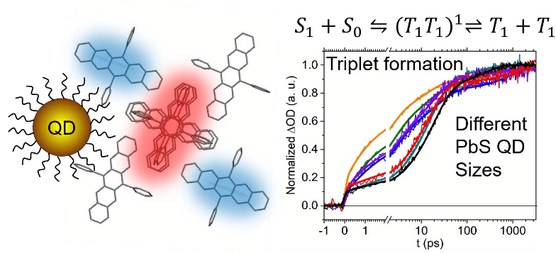 Systematic Control of the Rate of Singlet Fission within 6,13-Diphenylpentacene Aggregates Adsorbed to PbS Quantum Dots
