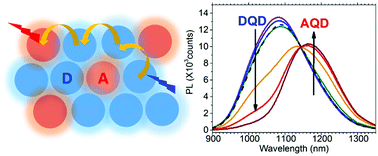 The Photoluminescence Spectral Profiles of Water-Soluble Aggregates of PbS Quantum Dots Assembled through Reversible Metal Coordination