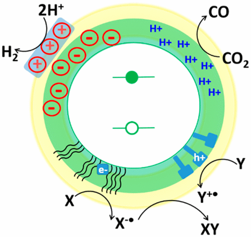Designing the Surfaces of Semiconductor Quantum Dots for Colloidal Photocatalysis