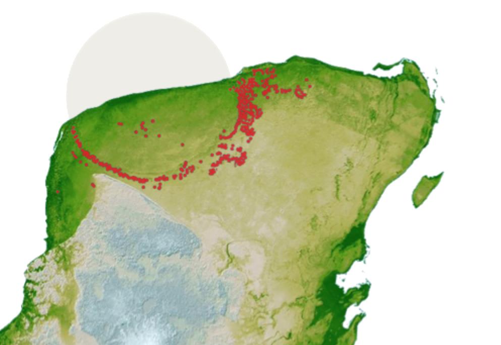 Yucatan - ROC