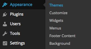 Themes menu in WordPress