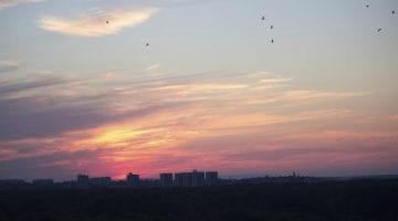 Sunset in Belgrade