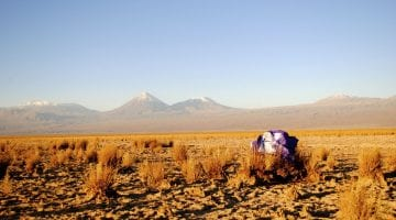 Chilean landscape