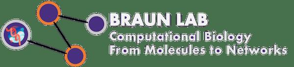 Braun Lab logo