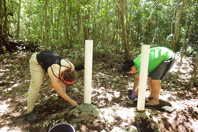 plantingpermiameters