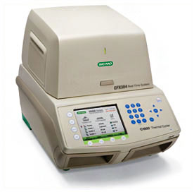 A CFX384 Real-Time PCR Detection System