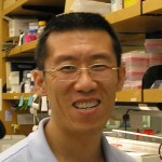Wenyu Huang, MD PhD Instructor