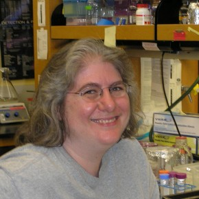 Debbie Fenner, PhD