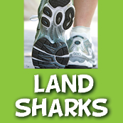 Land Sharks 5K Training