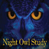 Night Owl Study