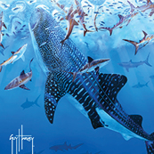 Guy Harvey's White Shark poster