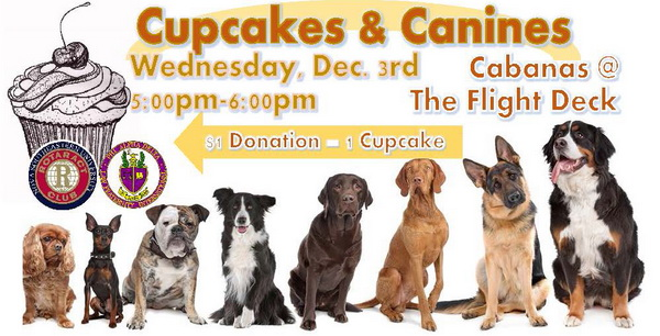 Cupcakes and Canines