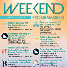 Weekend Programming January 2018
