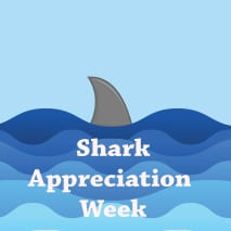 Orlando–Shark Appreciation Week July 21-27, 2018
